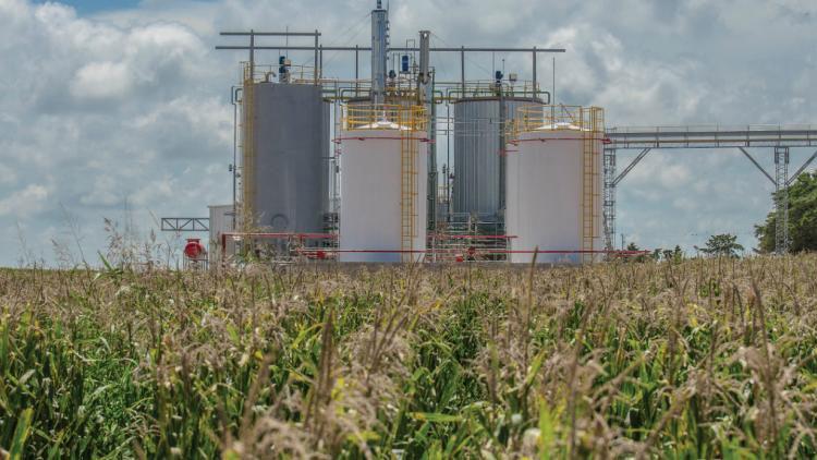 etanol de maiz porta hnos bioetanol