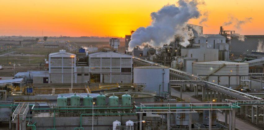 vicentin biodiesel energias renovables