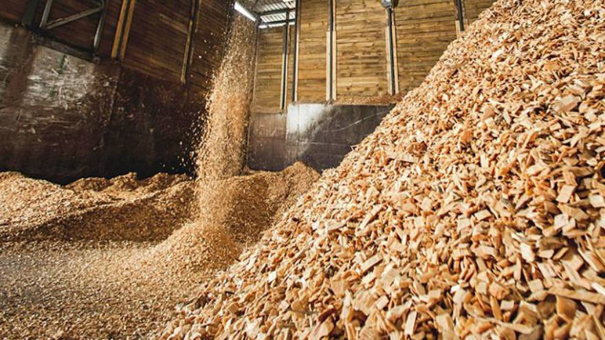 biomasa calderas biogas