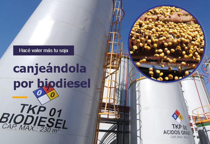 canje-biodiesel-soja (1)