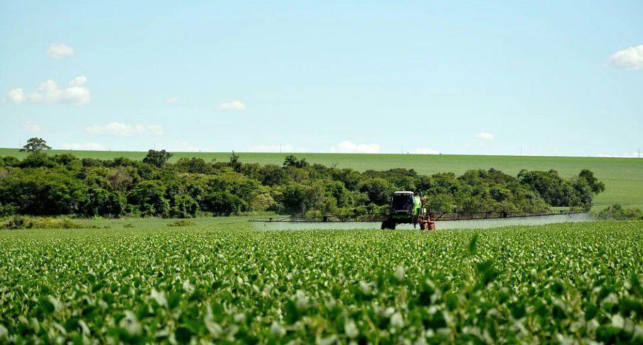 soja biodiesel estados unidos